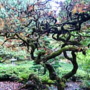 Beautiful Japanese Garden,butchart Gardens,victoria,canada 2. Poster