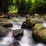 Beautiful Stream In Western Ghats Region Of Karnataka India Poster