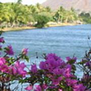 Beautiful Waikiki Poster