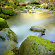 Beauty Creek Poster by Idaho Scenic Images Linda Lantzy