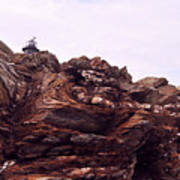 Beavertail Rock Formations Poster