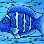 Beckys Blue Tropical Fish Poster