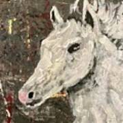 Behold A White Horse Poster