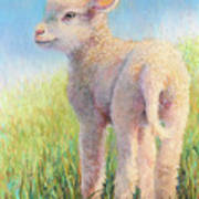 Behold The Lamb Poster