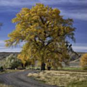 Belfry Fall Landscape 5 Poster by Roger Snyder