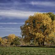 Belfry Fall Landscape 7 Poster by Roger Snyder