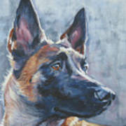 Belgian Malinois In Winter Poster