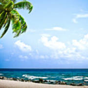 Belize Private Island Beach Poster