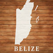Belize Rustic Map On Wood Poster