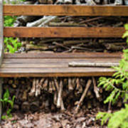 Bench And Wood Pile Poster