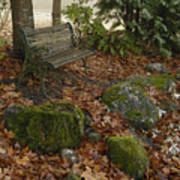 Bench In Fall Poster