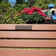 Bench In Steelhead Park Poster