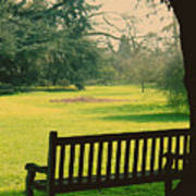 Bench Under A Tree Poster