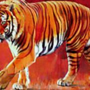 Bengal Tiger  Poster by Mark Adlington