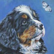 Bernese Mountain Dog Pup Poster