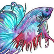 Betta Fish Poster by Jenn Cunningham