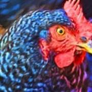 Beverlys Chicken Poster