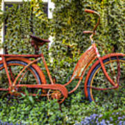Bicycle In The Garden Poster