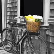 Bicycle With Flower Basket Poster