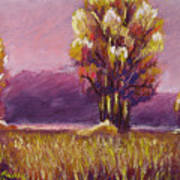 Big Otter Creek - Dawn Poster