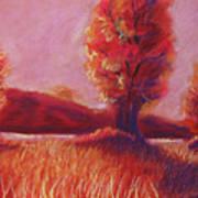 Big Otter Creek - Sunset Poster