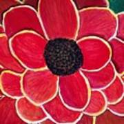 Big Red Zinnia Flower Poster