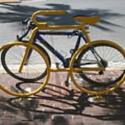 Bike And Rack Poster