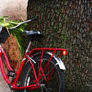 Bike Resting Poster