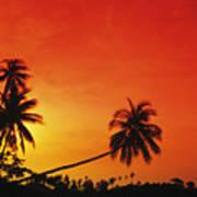 Bintan Island Sunset Poster