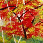 Birch 2 Poster