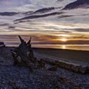Birch Bay Evening Poster