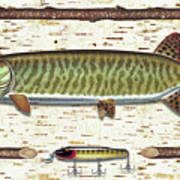 Birch Musky Poster by JQ Licensing