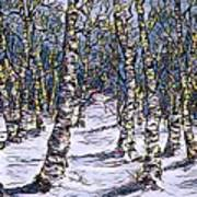 Birch Tree Mosaic 2 Poster