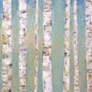 Blue Birch Trees Poster
