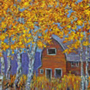 Birch Trees And Barn Poster