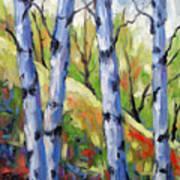 Birches 09 Poster