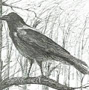 Bird, 2011 Poster