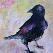 Bird Above His Chamber Door Poster