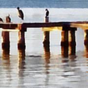 Bird Dock At Sunset Poster