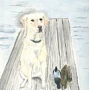 Bird Dog Poster