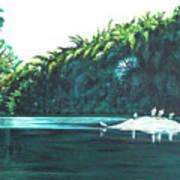 Bird Haven Poster