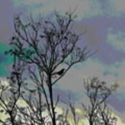 Bird In Tree Silhouette Iv Abstract Poster
