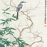 Bird On The Branch Poster