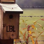 Birdhouse - 1 Poster
