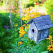 Birdhouse And Flowers Poster