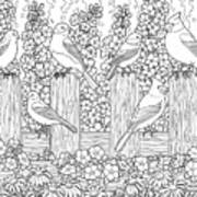Birds In Flower Garden Coloring Page Poster