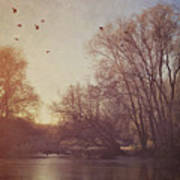 Birds Take Flight Over Lake On A Winters Morning Poster
