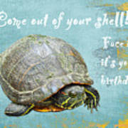 Birthday Card - Painted Turtle Poster