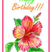 Birthday Hibiscus Poster