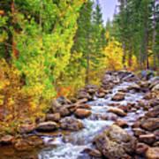 Bishop Creek In Autumn Poster